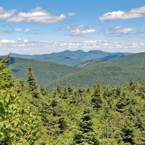 Catskill Fall Hike Series: View of the Black Head Range from West Kill Mountain