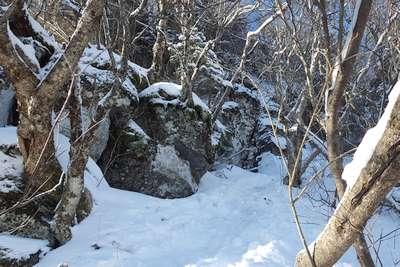 Ledge on Kaaterkill High Peak bushwhack