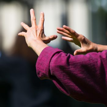 Practice of Tai Chi Chuan in outdoor. Detail of hand positions