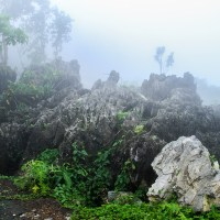 Tanay Pushes for Masungi Karst as Newest Eco-Tourism Spot