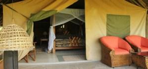 Flamingo hill camp Nakuru