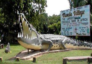 Mamba Village tour Mombasa