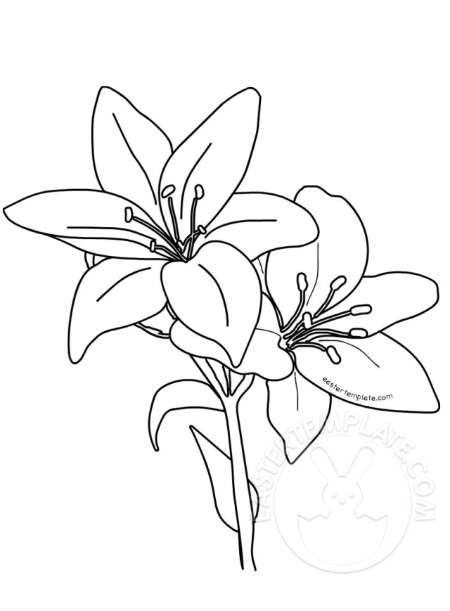 Printable Easter lilies template  Easter Template