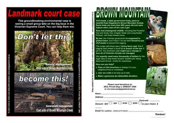 Save Brown Mountain leaflet
