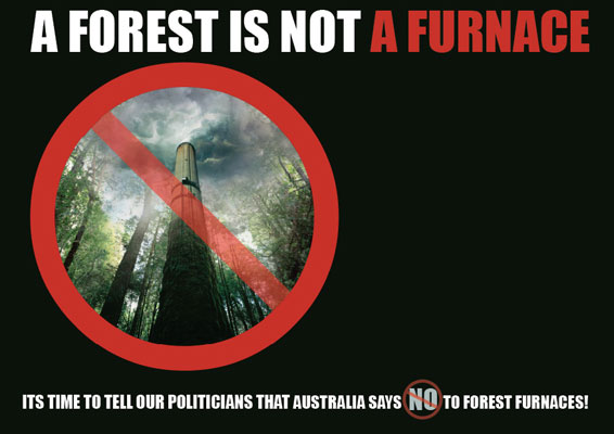 A forest is not a furnace