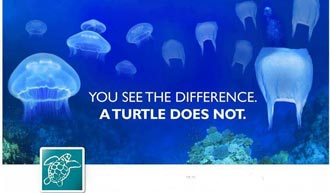 Plastic bags You see the difference a turtle doesn't