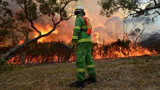 A controlled burn at Warnett on Western Port Bay. Photo: Justin McManus