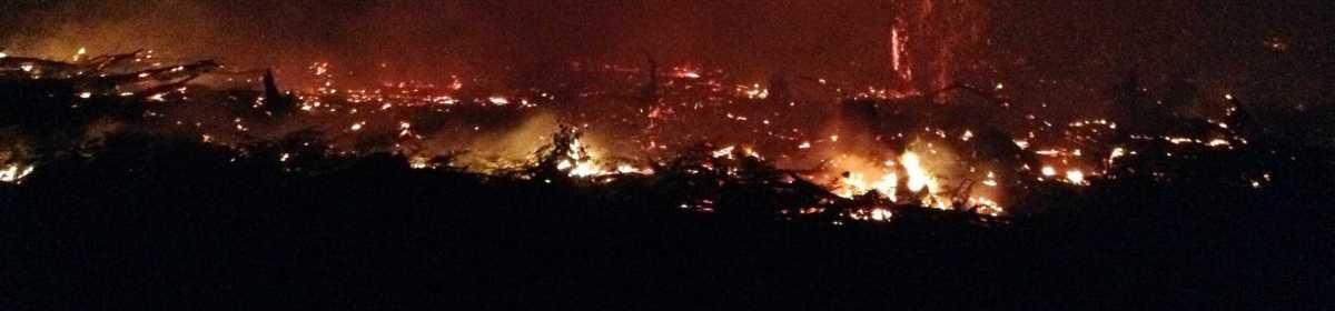 East Gippsland clearfell and burn