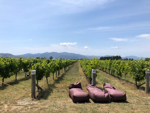spy valley vineyard