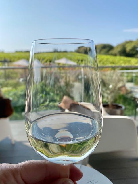 trevibban vineyard