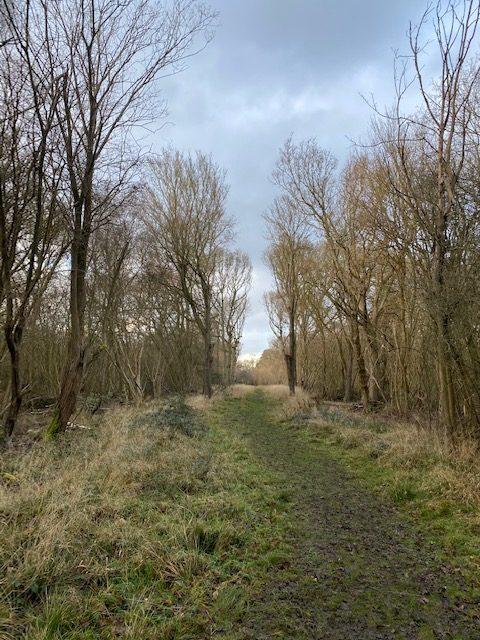 visit hatfield forest