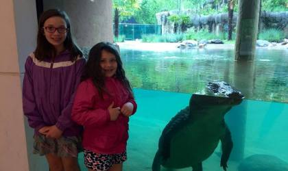 Zambezi River Hippo Camp at the Memphis Zoo