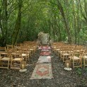 Celebrant Weddings in the Woodland