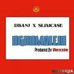 D'banj ft. Slimcase — Ogbomalejo