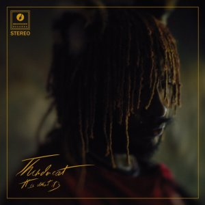 ALBUM: Thundercat – It Is What It Is [Zip File]