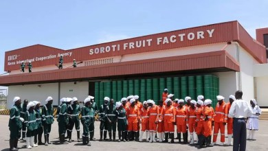 Photo of Teso Fruit Farmers Reap Big from Soroti Fruit Factory