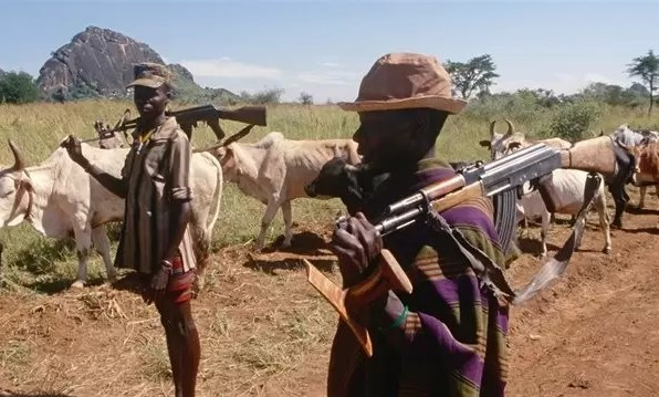 Photo of Karamojong Cattle Rustlers Make Off with Over 100 Animals in Bukwo