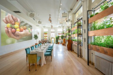 Bouley-Botanical_2014_Wedding_Events_Space