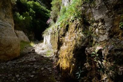 La Rahige, near Canillas de Aceituno