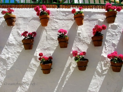 Flower pots filled with geraniums, in Torrox