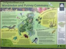Wimbledon & Putney Commons
