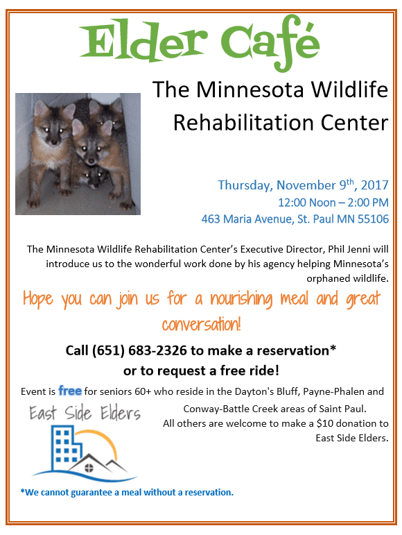Elder Cafe: November 2017 – Learn About the Wildlife Rehabilitation Center of Minnesota