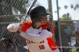 Belinda Gonzalez Lincoln Tigers