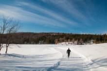 Robin enjoying a sunny morning ski in the Windekind Farm field up at the Camel's Hump Nordic Ski Center yesterday.