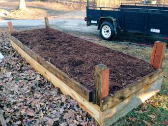 looking at a completed raised comfrey bed