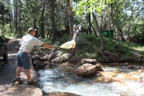 2015 trout stocking schedule updated east verde river cabin for Arizona game and fish locations