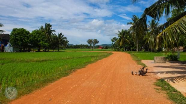 Kampot and Kep - Cambodia-48