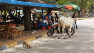 Kampot and Kep - Cambodia-5