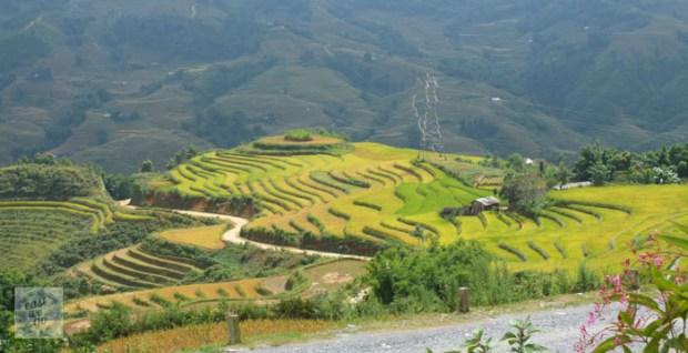 Sapa Vietnam-67