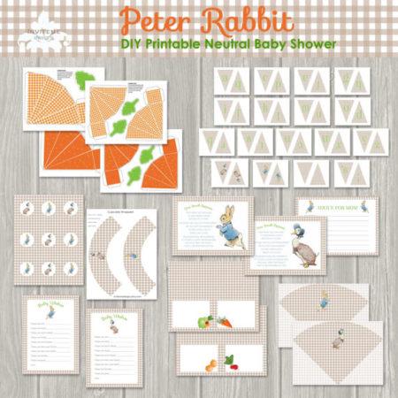 DIY Peter Rabbit baby shower kit
