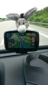 EASYRider Pferdetransporte Navigationssystem