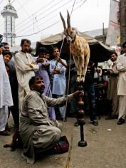 Katusirkus ilmestyi kuin tyhjästä Lahoren vanhassa kaupungissa