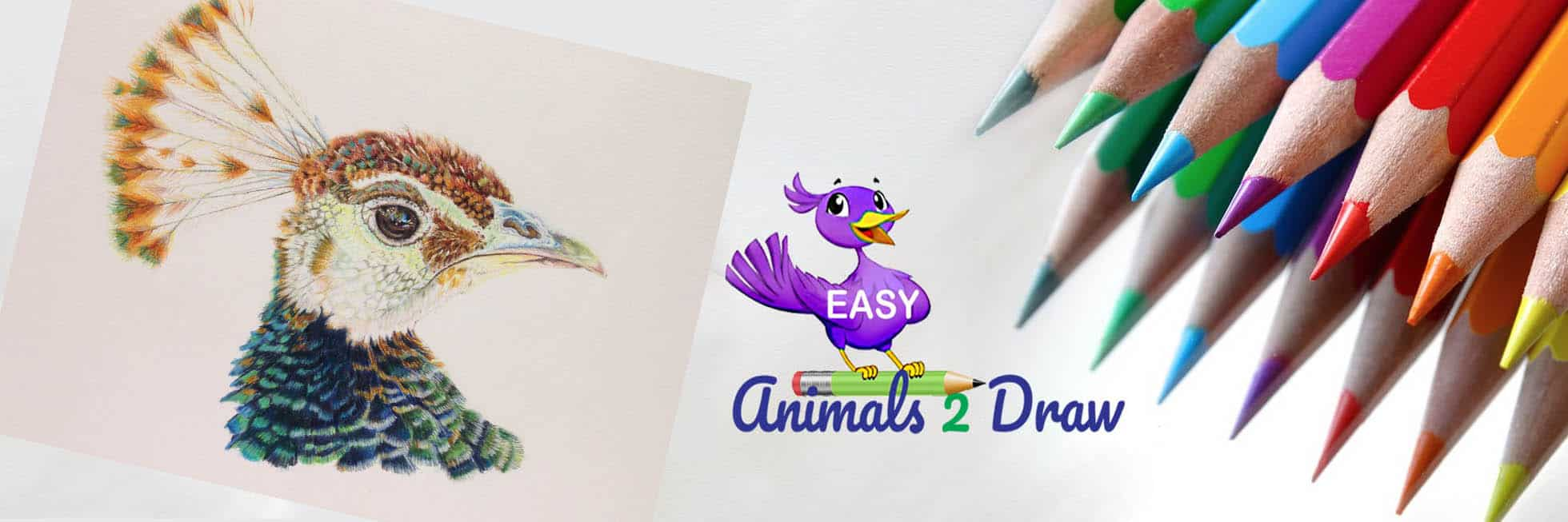 Ideas for easy Bird drawing in colored pencil
