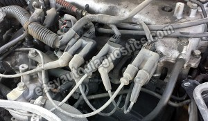 19972004 30L V6 Firing Order Ignition Coil Spark Plug Wire ID