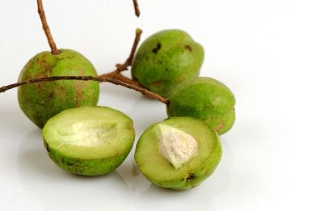 Bibhitaki (Baheda) Terminalia bellirica: Uses, Research, Remedies