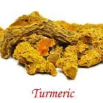 Turmeric: Curcuma longa Benefits, Usage, Dose, Side Effects