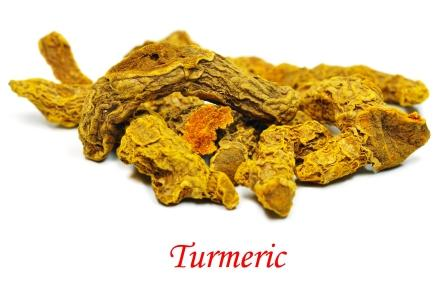 Dried turmeric rhizome