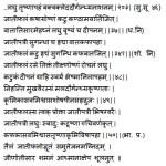 Jaiphal Nutmeg – Myristica fragrans Uses, Dose, Side Effects