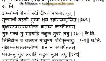 Essay On Mango Tree In Sanskrit Language   Essay