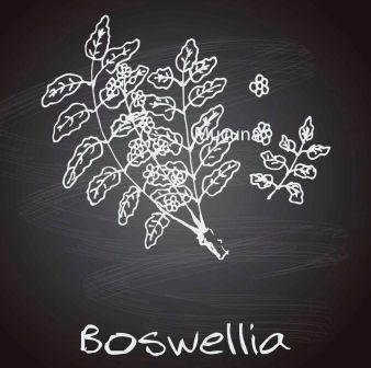 how to take boswellia serrata