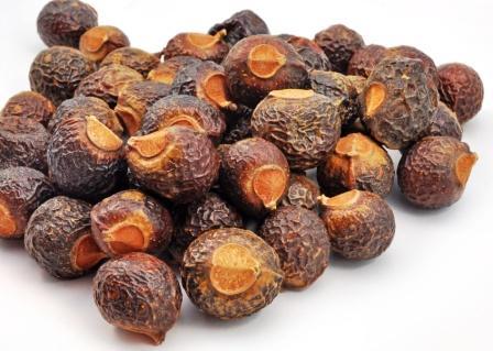 Reetha - soapnut
