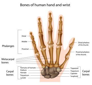 Carpal Tunnel Syndrome Remedies, Tips, Ayurveda treatment