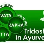 Charaka Vatavyadhi Chikitsa 28th Chapter