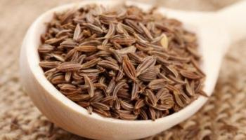 Image result for Parsley Seeds effect