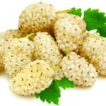 White Mulberry: Morus alba Uses, Research, Remedies, Side Effects