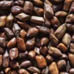 Foetid Cassia Chakramarda Remedies: Psoriasis, Dandruff, Headache